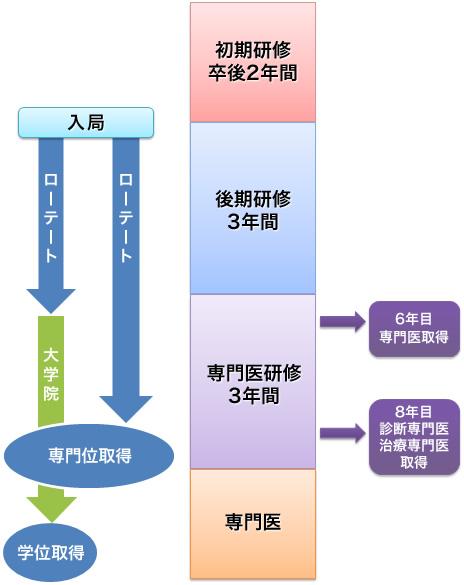 当科における研修システムの概要